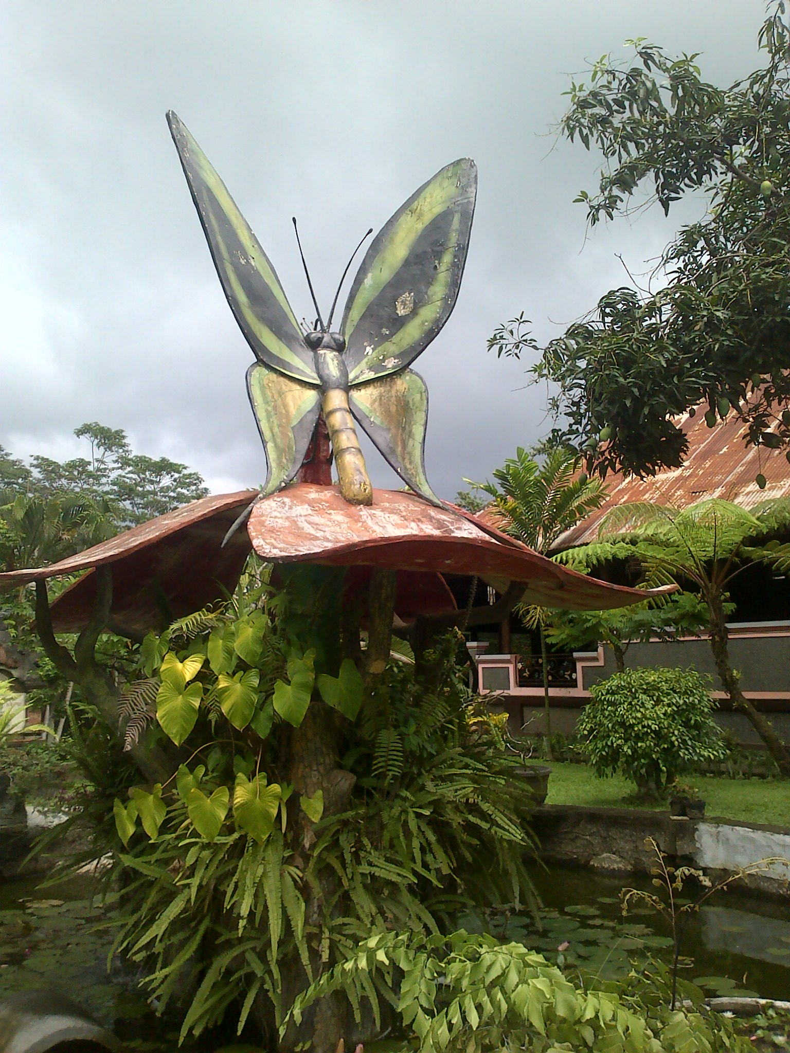 Taman Kupu Kupu Bali Terkini IMG-20141225-01510