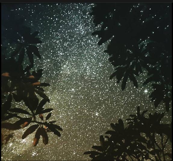 2016 Nyepi night at Ubud2